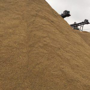 giá cát xây dựng hiện nay